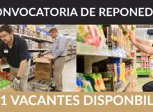 231 ofertas de trabajo de REPONEDOR encontradas